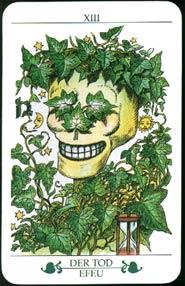 Madru: Das Baum Tarot - The Tree Tarot