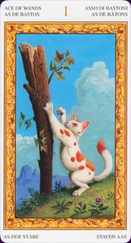 Tarot of the White Cats